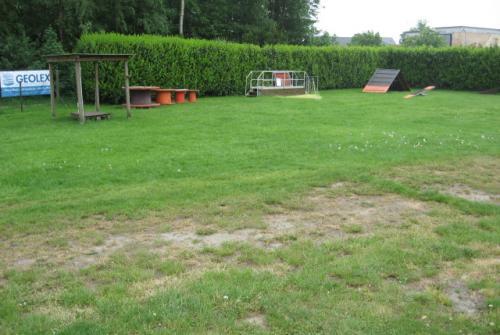20180706_AV_INF_De Hondenhoeve hondenschool Klossestraat.JPG