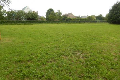 Wespenorchisstraat buurtvoetbal.jpg
