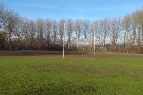 Rugbyterrein